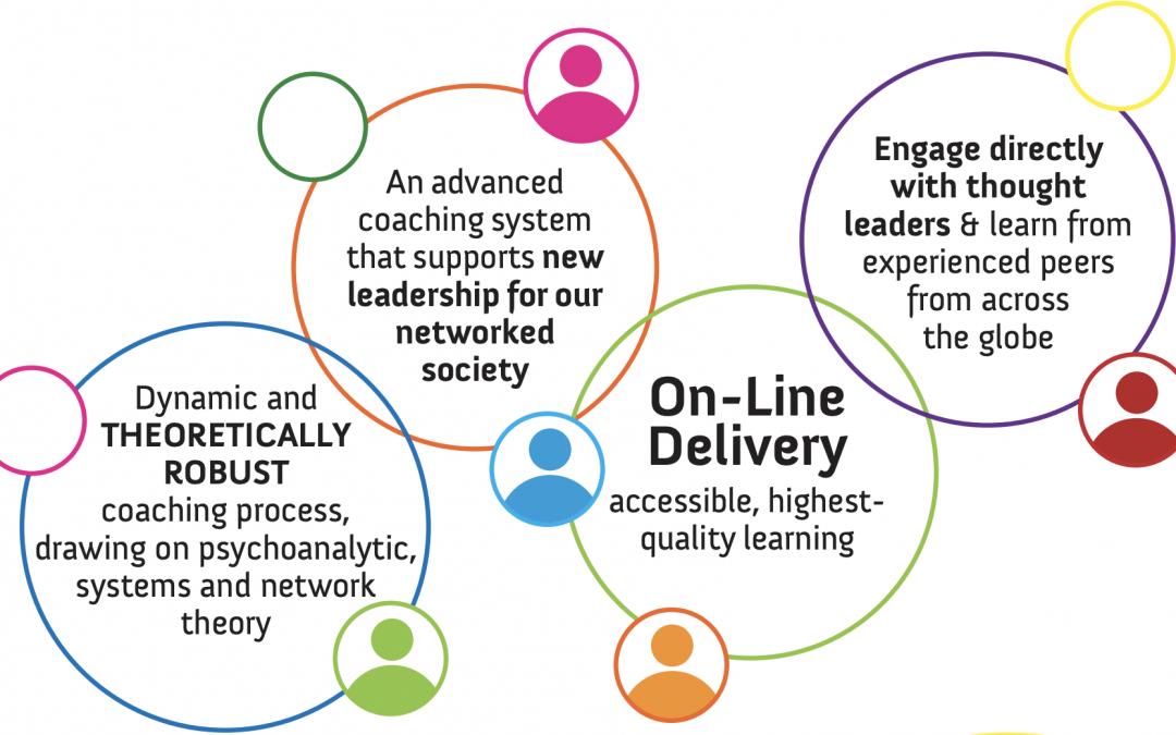 Analytic-Network Advanced Coach Training